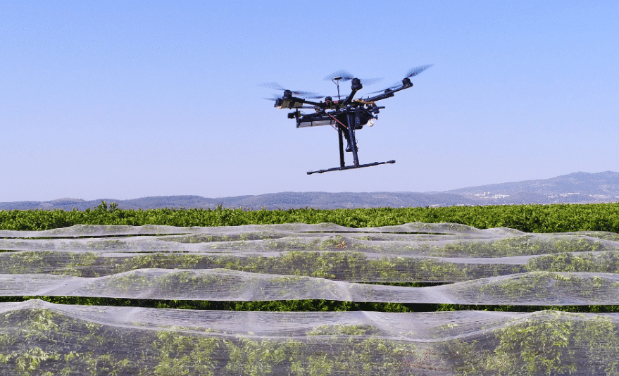 PRECISE CONTROL OF RODENTS IN ALFALA FIELDS USING DRONES